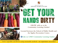 get-your-hands-dirty