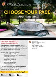 Choose Your Pace Postcard